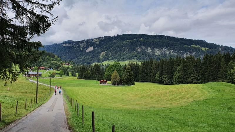 Über den Sesselweg, der als asphaltierte kleine Straße verläuft, erreichen wir die Alpe Dornach.