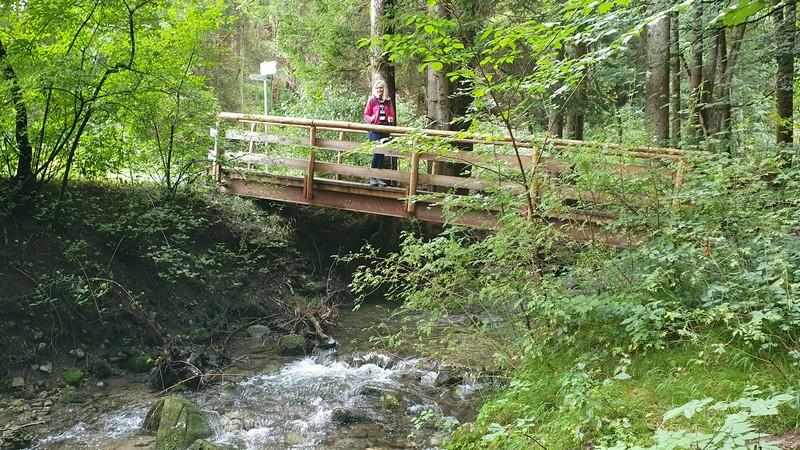 Den Hinanger Bach treffen wir schon gleich zu Beginn unserer Tour zu den Hinanger Wasserfällen un den Eybachtobel.