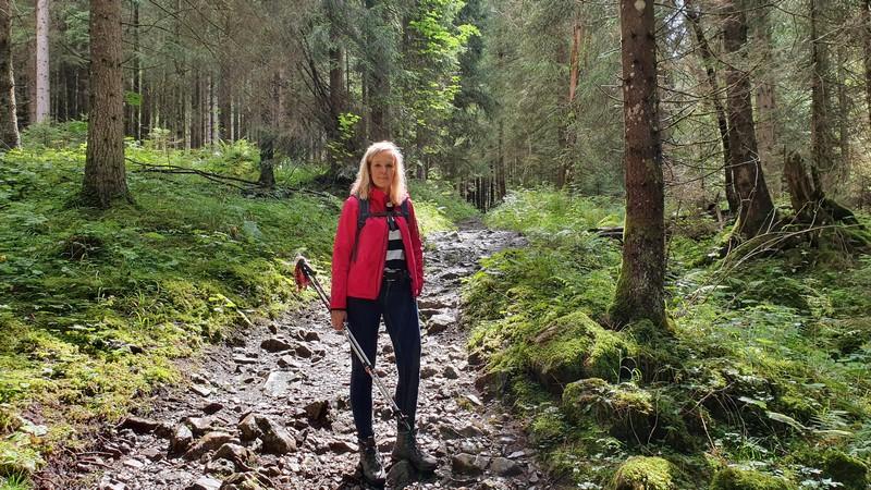 Stillere Wälder erwarten uns im letzten Abschnitt unserer Wanderung.