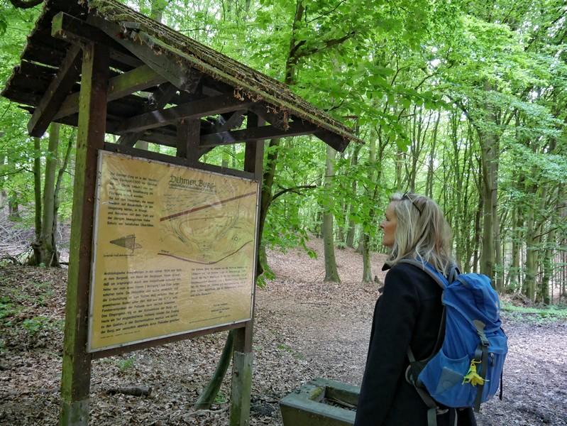 Eine Infotafel gibt Aufschluss über die Geschichte der Dehmer Burg.