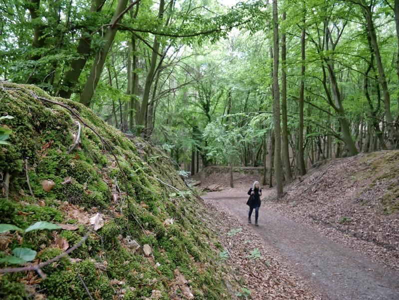 Tief eingeschnittene Hohlwege führen uns langsam bergauf.
