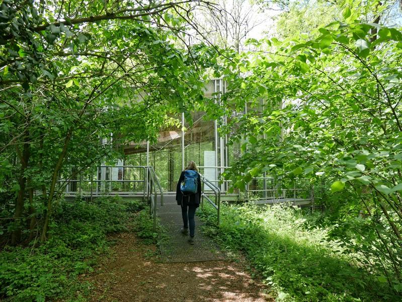 Die Kreuzkirche Wittekindsberg ist vollständig von Glasfronten umfasst.