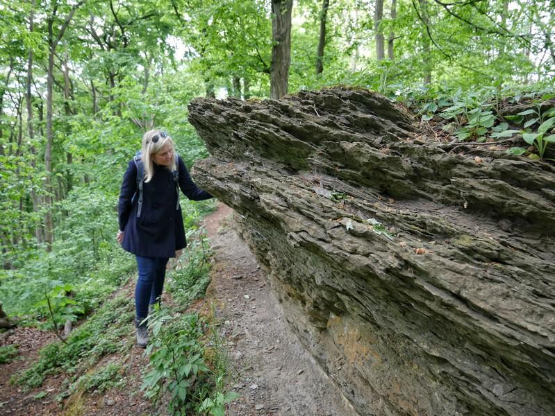 Die Sandsteinfelsen oberhalb der Wolfsschluchthöhle unterziehen wir natürlich einer genaueren Untersuchung!
