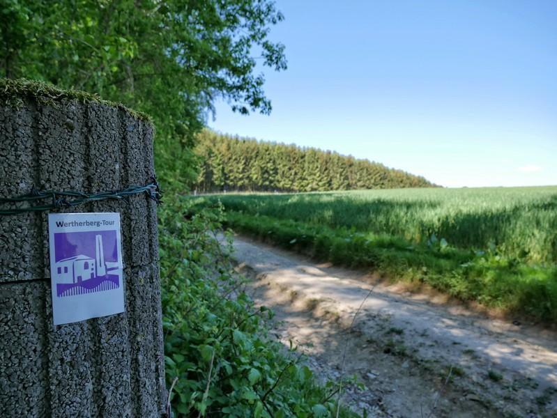 Die lilaweißen Schilder der Wertherberg Tour geleiten uns zu Beginn.
