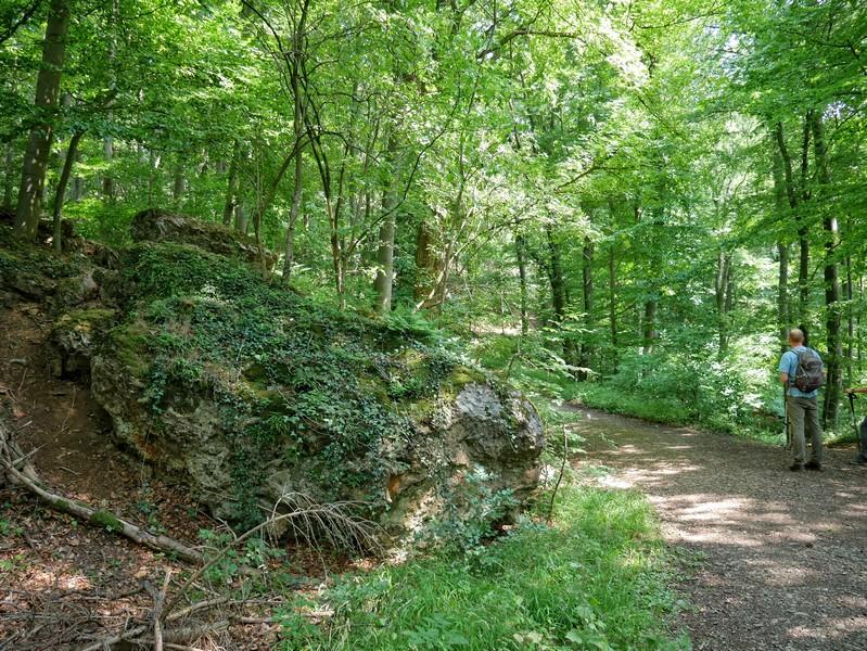 An den Springsteinen, die direkt an der Drei-Burgen-Route liegen.