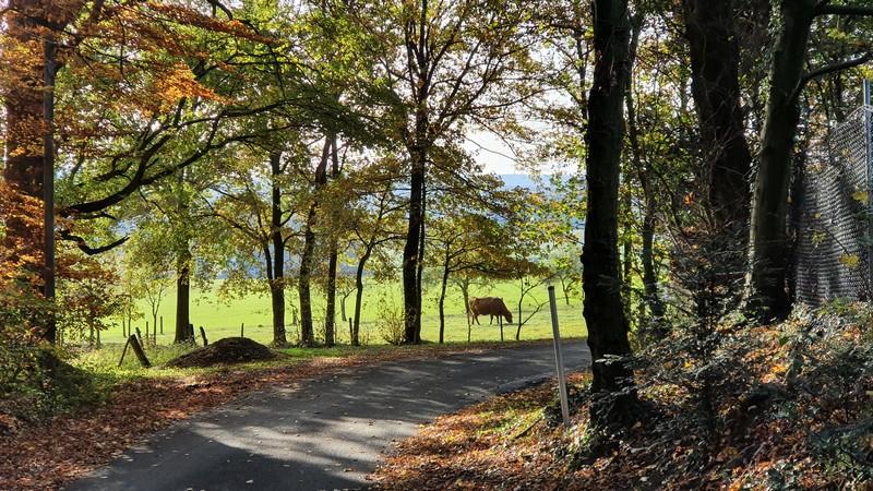 Die Aussichten bleiben ländlich auf diesem Abschnitt auf dem Eselspatt.