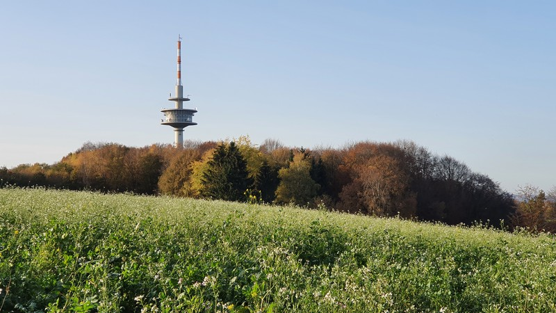 Oben angekommen, sehen wir auch schon den Tecklenburger Fernsehturm, an dem wir noch vorbei wandern werden.
