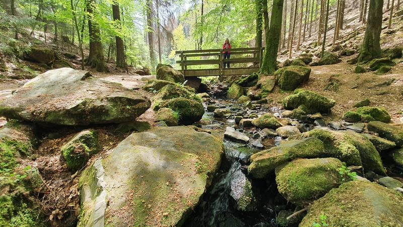 Mehrmals queren wir den Silberbach auf unserer Wanderung.