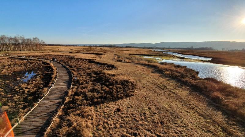 Vom Turm aus bieten sich uns fantastische Ausblicke über das 550 Hektar große Gebiet.