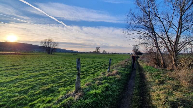 Zwischen Weiden und nun auf schmaleren Wegen setzen wir unsere Wanderung durch das Hiller Torfmoor fort.
