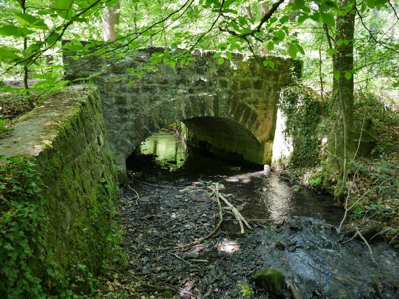 Wir queren den Silberbach ein weiteres Mal, um zur Silbermühle zu gelangen.