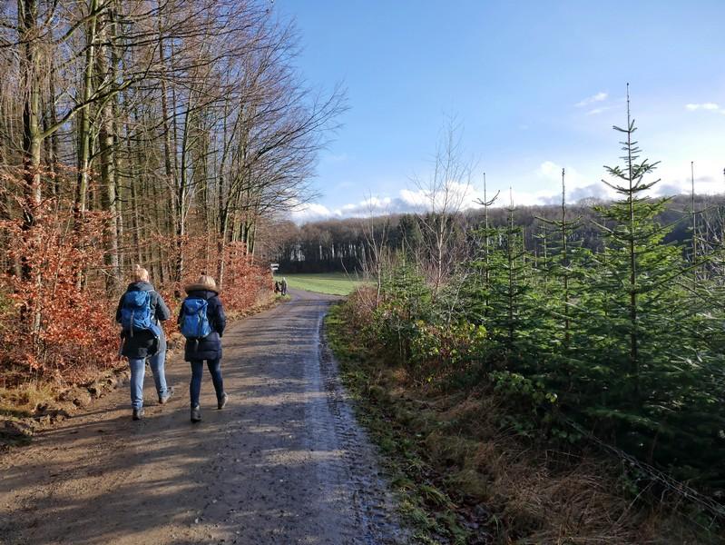 Immer wieder sind wir aber auch am Waldrand unterwegs.