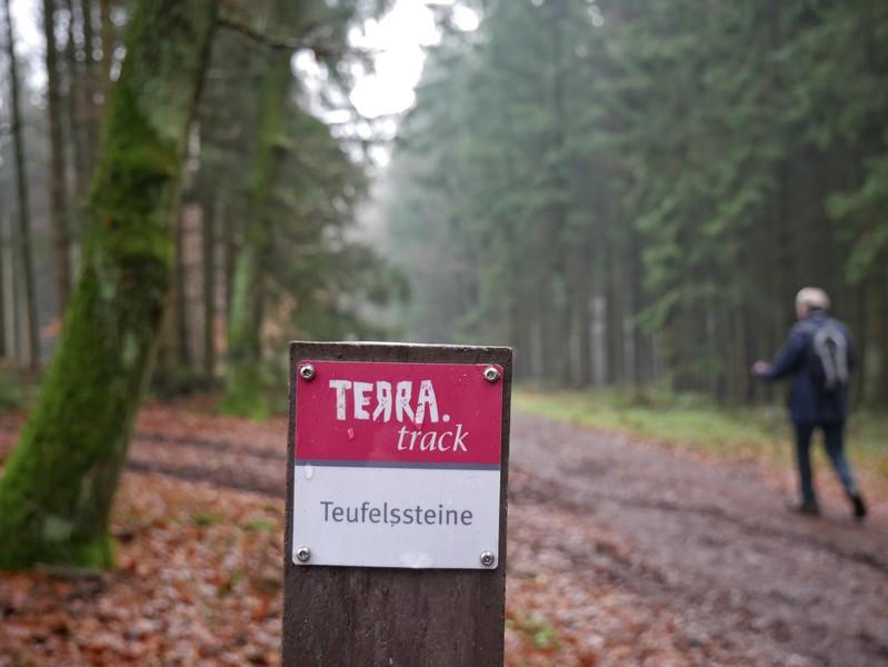 Die rotweißen Markierungen kennen wir gut - auf dem TERRA.track Teufelssteine sind sie wieder unsere treuen Begleiter.