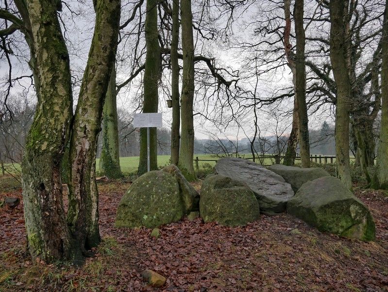 Das Großsteingrab Teufels Backofen ist das Erste der Beiden auf unserer Tour auf dem TERRA.track Teufelssteine.