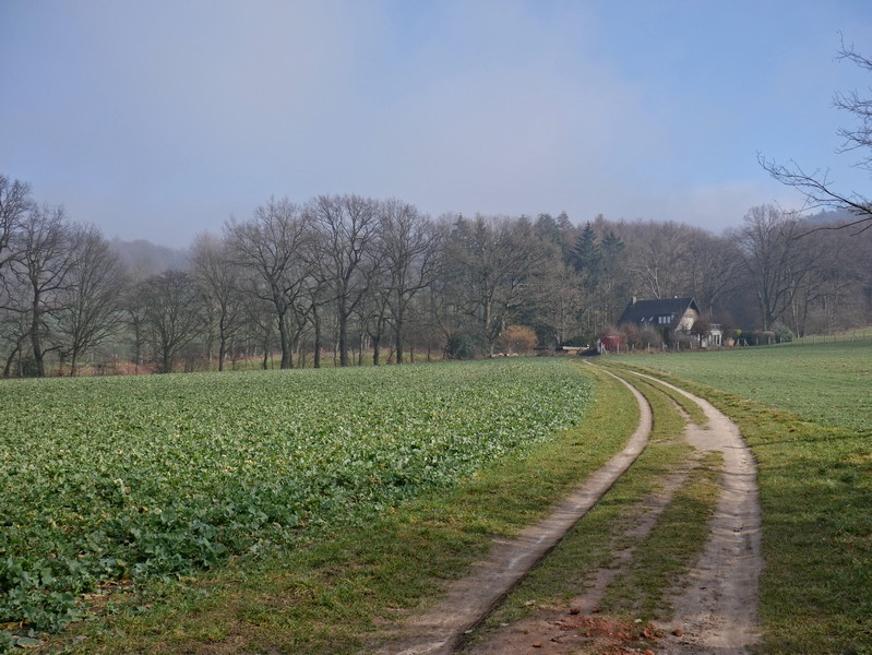 Gleich hinter der Friedrichshöhe geht es ländlich-idyllisch zu auf dem Bergweltweg in Steinhagen.