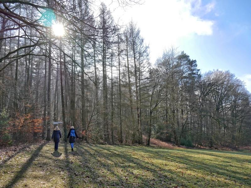 Zwischen Wald und Feld wandern wir zu Beginn auf dem Bergweltenweg.