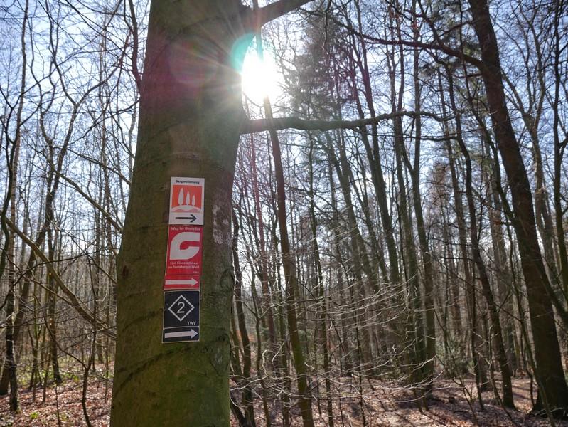 """Auch den """"Weg für Genießer"""" treffen wir des Öfteren auf dieser Tour. Auch er ist in meinem Buch """"Teutoburger Wald. Wanderungen für die Seele"""" enthalten."""