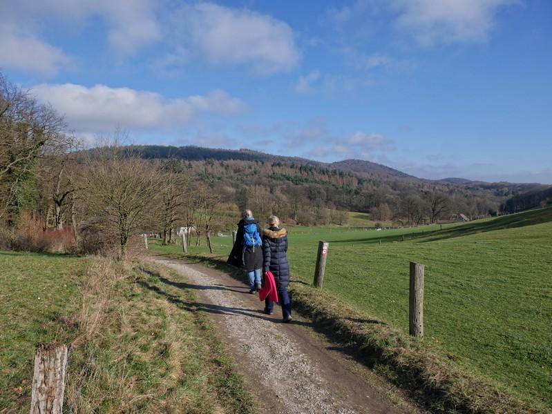 Dann geht es auf den letzten Metern auf dem Bergweltenweg bei schöner Aussicht zurück zur Gaststätte Friedrichshöhe in Steinhagen.