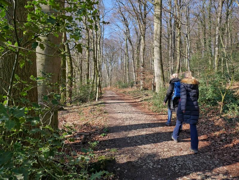 Die Streckenführung auf dem Quelleweg bei Steinhagen bleibt abwechslungsreich.
