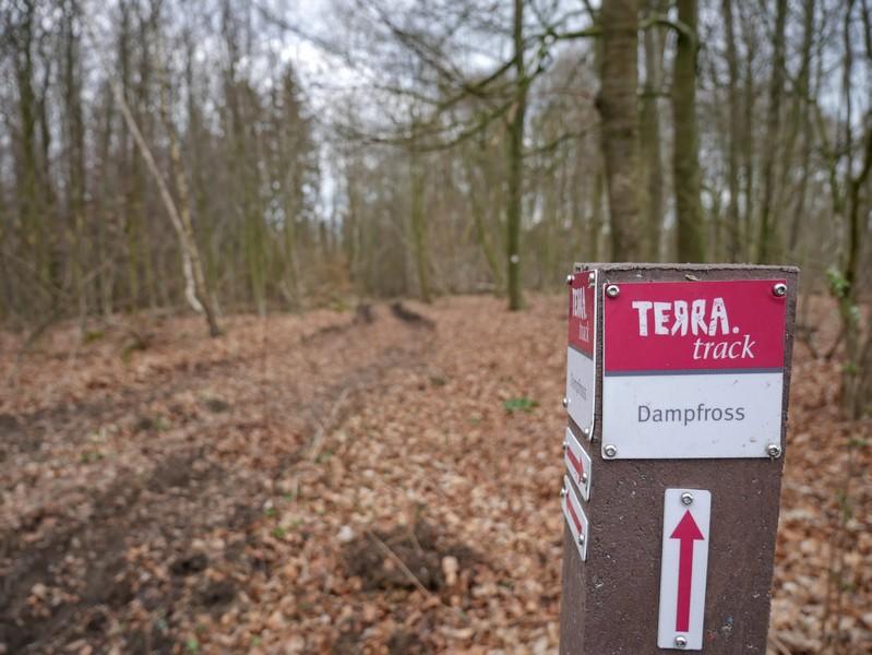Rotweiß markiert nimmt uns der TERRA.track Dampfross in Empfang.