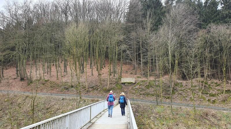 Der Sachsenherzog ist im Wiehengebirge überall präsent. Auch diese Brücke ist nach ihm benannt.