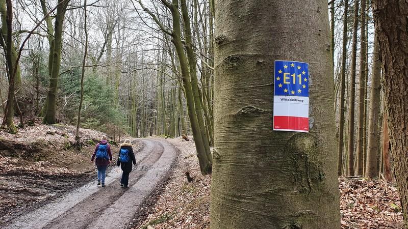 Der Wittekindsweg ist durchgängig gut und zuverlässig markiert. Er ist zugleich Teil des europäischen Fernwanderweges E11.