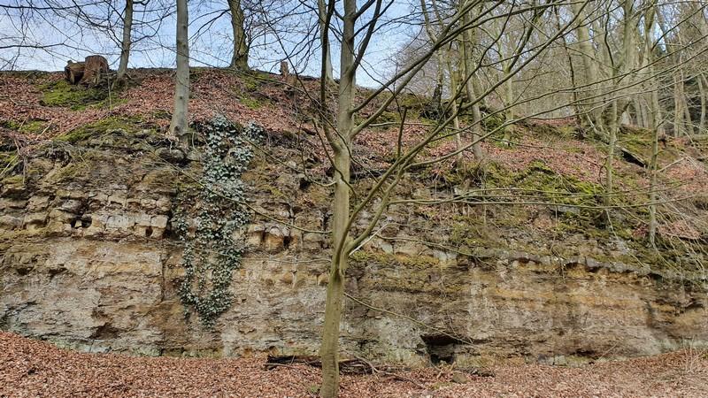 Nur eine Felswand oder doch Relikt einer frühzeitlichen Wehranlage? Man wird ja noch ein wenig träumen dürfen!