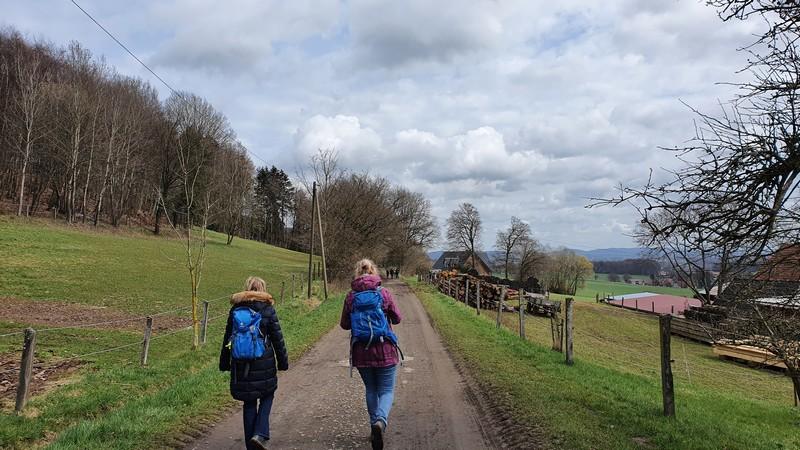 Im nächsten Abschnitt unserer Wanderung geht es ländlich zu.