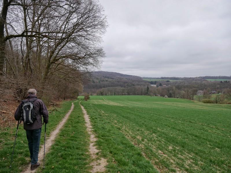 Wir erreichen den Rand des Waldes und gehen nun ein Stück entlang von Feldern.