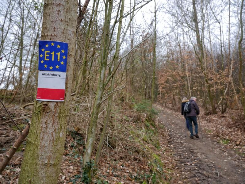 Zusammen mit dem Wittekindsweg und dem Europäischen Fernwanderweg 11 geht es bergauf.