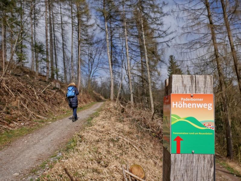 Die bunte Beschilderung ist nicht zu übersehen und auf dem Paderborner Höhenweg auch absolut zuverlässig.