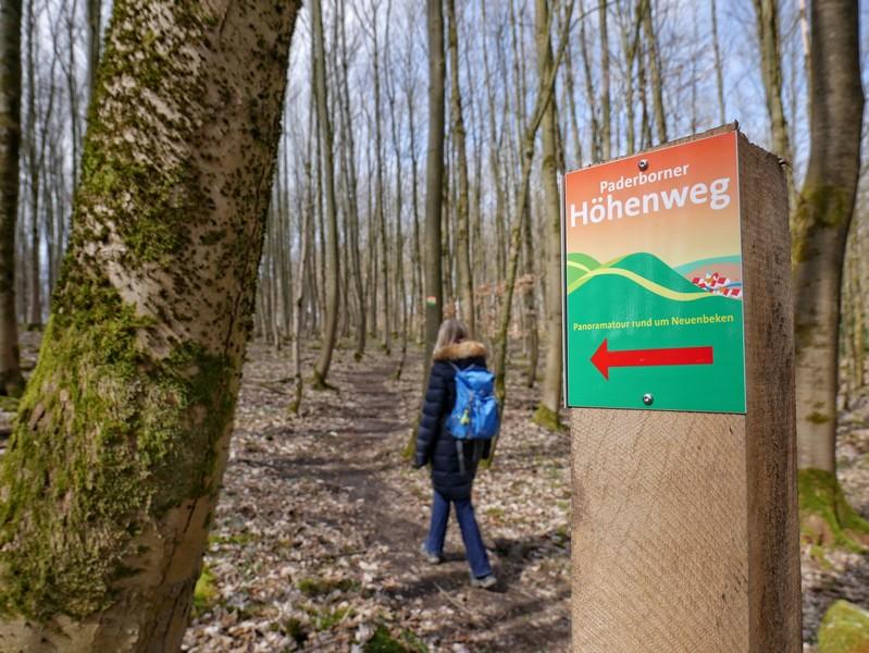 Nach einem weiteren windigen Abschnitt führt uns der Paderborner Höhenweg wieder in den etwas geschützteren Wald.