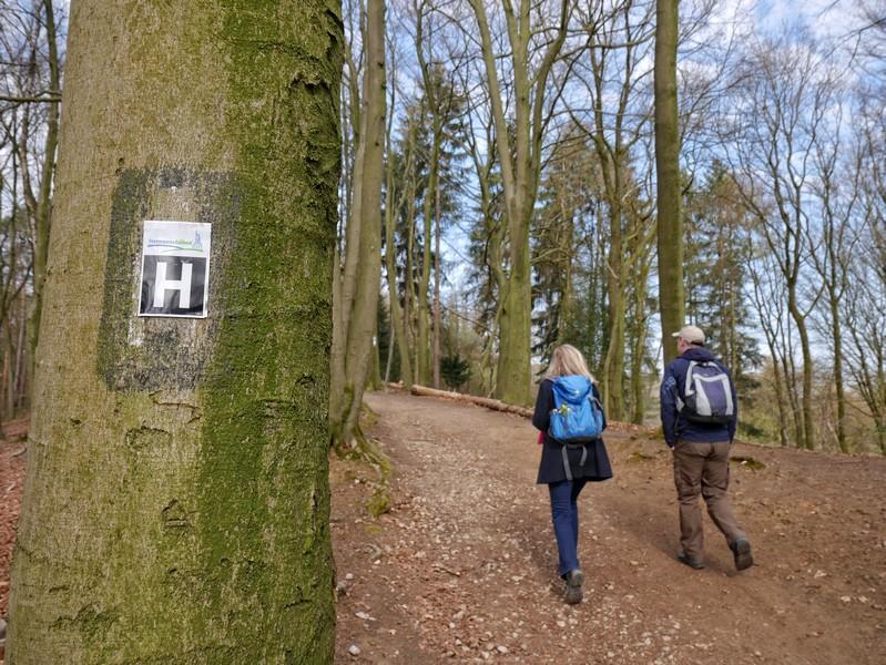 Dem Hermannsweg begegnen wir bei unserer Tour auf dem Fledermauspfad Brochterbeck noch öfter.
