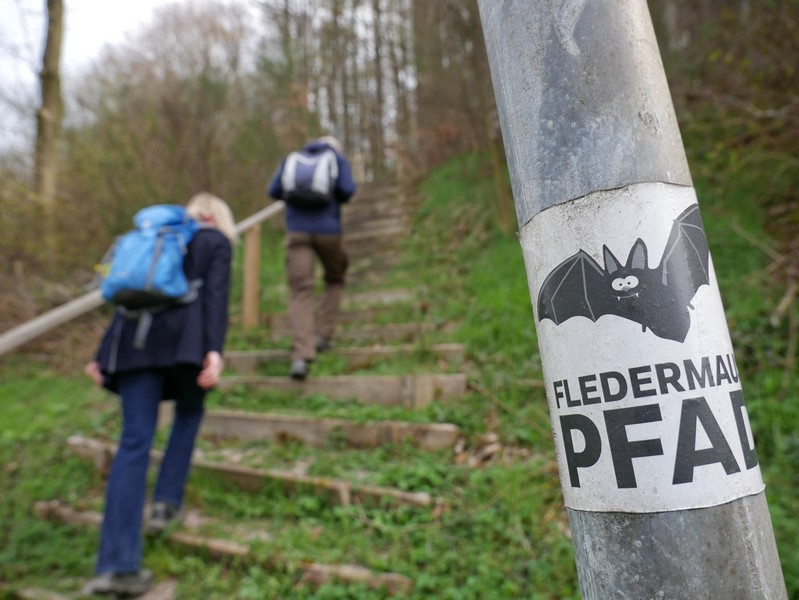 Eine der seltenen Relikte seiner früheren Wegmarkierung vom Fledermauspfad Brochterbeck entdecken wir am steilen Aufstieg aus dem Bocketal.