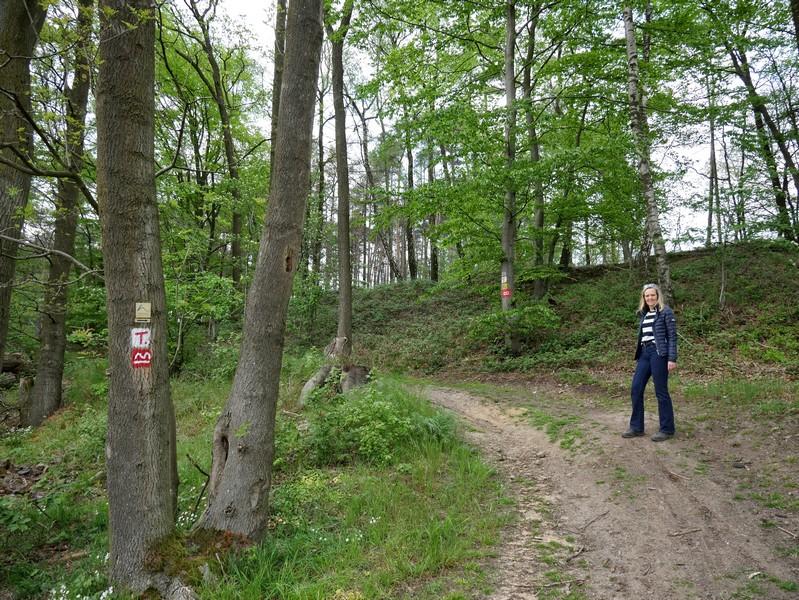 Hinter der Gaststätte Penterknapp geht es wieder in den Wald.