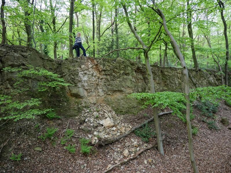 Zu guter Letzte führt uns der TERRA.track Penter Egge noch an einen ehemaligen Steinbruch.