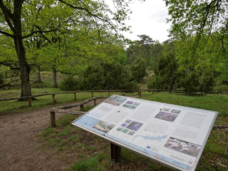 Auf einer Infotafel am Picknickplatz erfahren wir mehr über die Guntruper Heide und über ihre Bewohner.