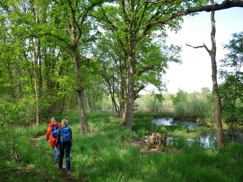 Wir lassen uns einmal mehr von der naturbelassenen Kulisse für unsere Wanderung verzaubern.