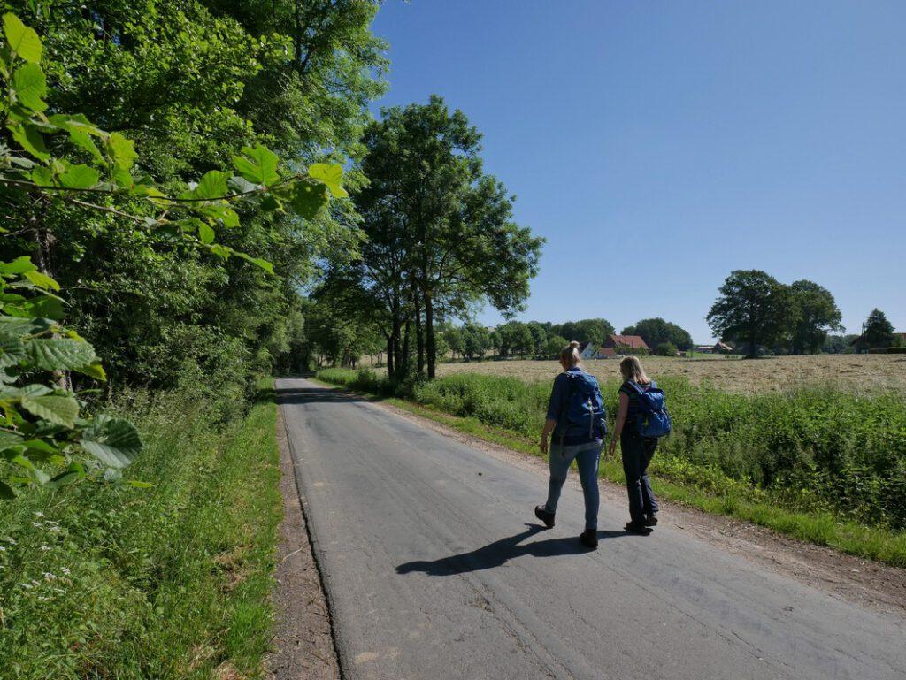 Zwar führt uns der Gießkannenweg anfangs viel über Asphalt, in Anbetracht der idyllischen Umgebung in Tecklenburg-Ledde und weil fast kein Verkehr herrscht, ist das aber leicht verschmerzbar.