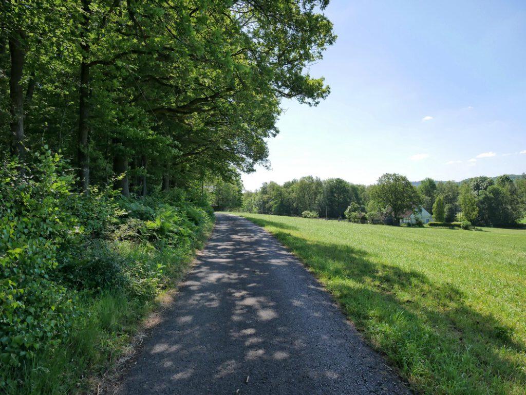 Zwischen Wald und Feld wandern wir weiter auf dem Gießkannenweg und befinden uns hier nun übrigens auf dem Hupenberg. Ernsthaft.