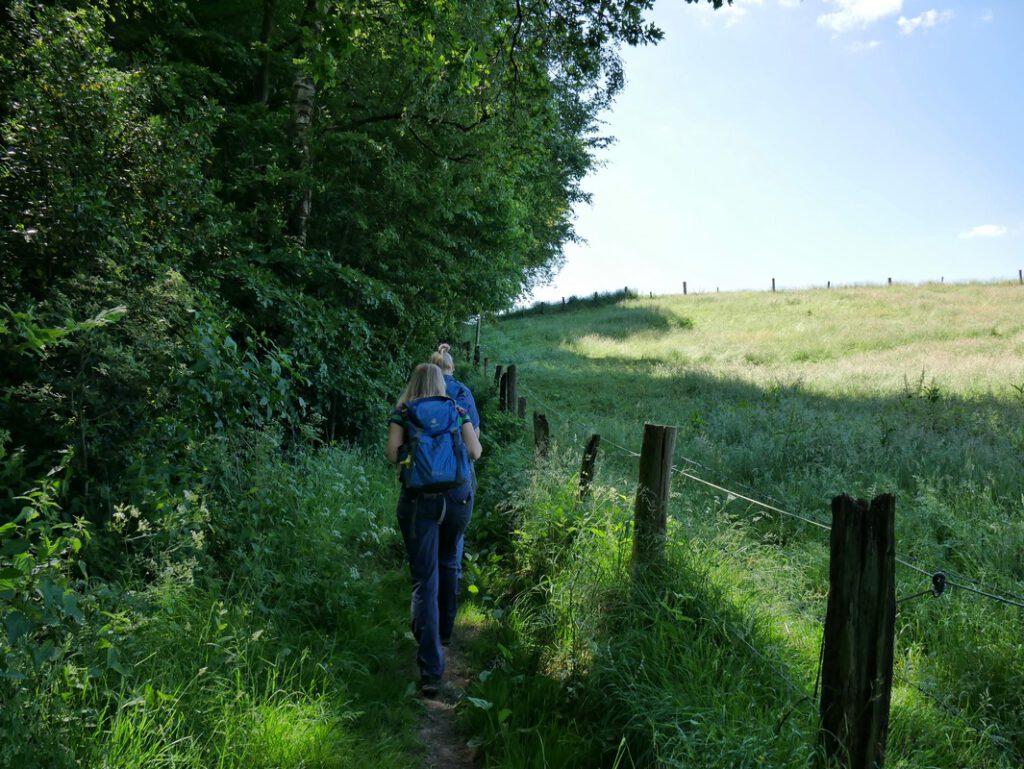 Entlang von Feldern steigen wir auf in Richtung Tecklenburg.